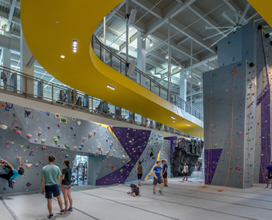 People climbing in climbing area