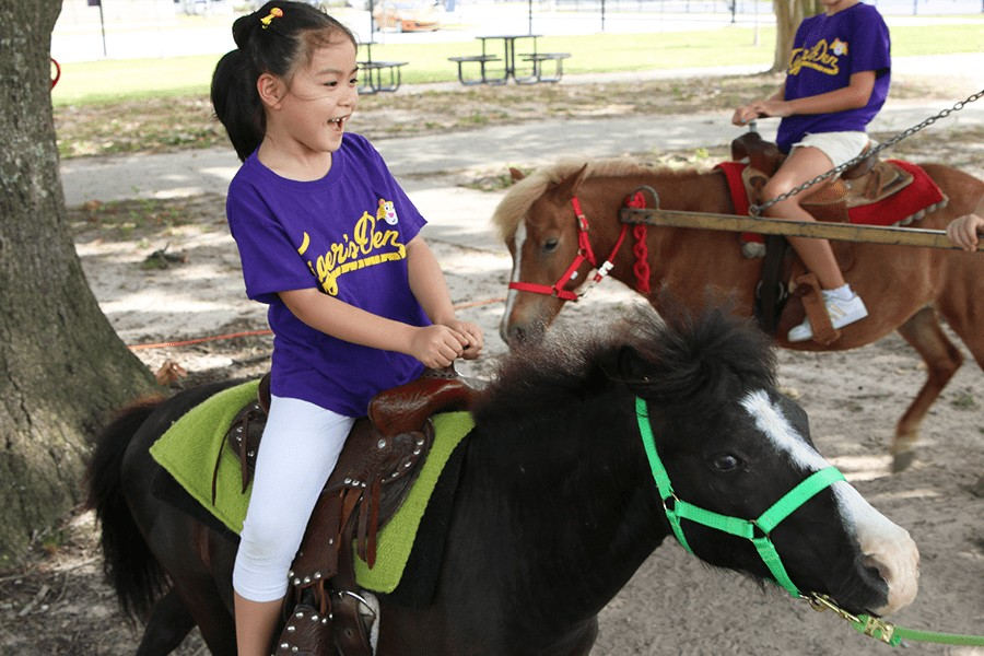 child riding a mini horse